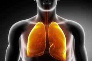 acetilcisteina para sistema respiratorio